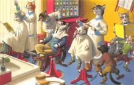 top003723 - Cat Post Card