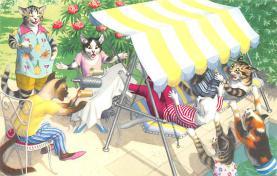 top003737 - Cat Post Card