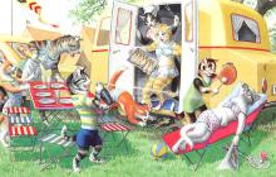 top003747 - Cat Post Card