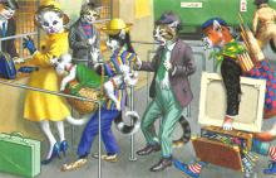 top003755 - Cat Post Card
