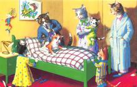 top003765 - Cat Post Card