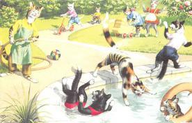 top003769 - Cat Post Card