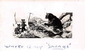 top003799 - Bear Post Card