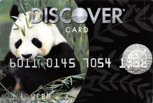 top003831 - Bear Post Card
