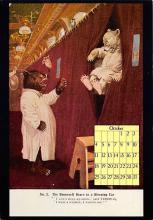 top003835 - Bear Post Card