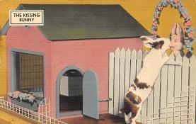 top003997 - Rabbit Post Card