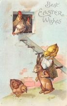 top004023 - Rabbit Post Card