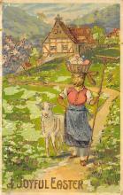 top004025 - Rabbit Post Card