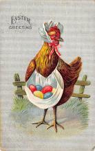 top004095 - Chicken Post Card