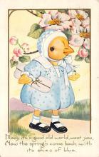 top004097 - Chicken Post Card