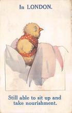 top004101 - Chicken Post Card