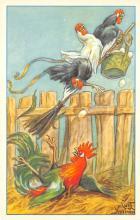 top004107 - Chicken Post Card