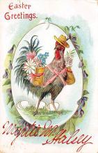 top004111 - Chicken Post Card