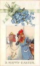 top004163 - Chicken Post Card