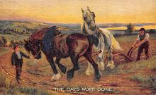 top004467 - Horse Post Card