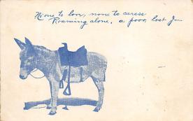 top004851 - Burro Post Card