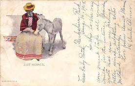 top004895 - Burro Post Card