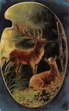 top005017 - Deer Post Card
