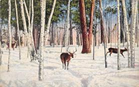 top005063 - Deer Post Card