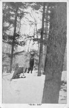 top005117 - Deer Post Card