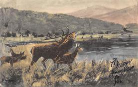 top005141 - Deer Post Card