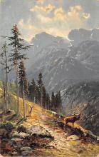 top005173 - Deer Post Card