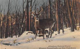 top005179 - Deer Post Card