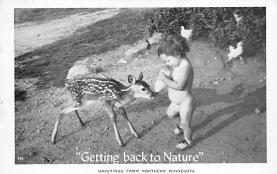 top005215 - Deer Post Card