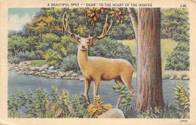 top005367 - Deer Post Card