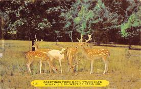 top005373 - Deer Post Card