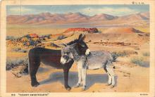 top005455 - Donkey Post Card