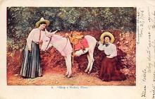 top005483 - Donkey Post Card