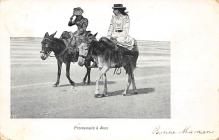 top005507 - Donkey Post Card