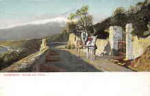 top005513 - Donkey Post Card