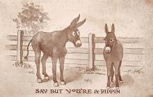 top005529 - Donkey Post Card