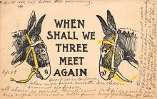 top005563 - Donkey Post Card