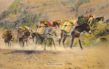 top005585 - Donkey Post Card
