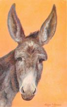 top005595 - Donkey Post Card