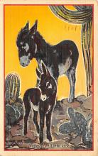 top005601 - Donkey Post Card