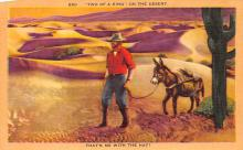 top005613 - Donkey Post Card