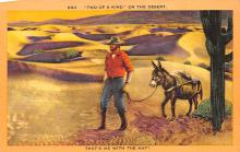top005615 - Donkey Post Card