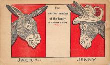 top005617 - Donkey Post Card