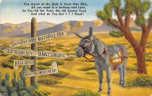 top005635 - Donkey Post Card