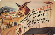 top005661 - Donkey Post Card