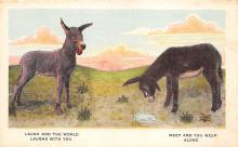 top005673 - Donkey Post Card