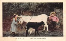 top005681 - Donkey Post Card
