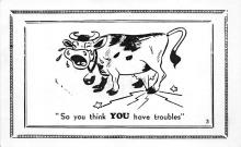 top005901 - Cow Post Card