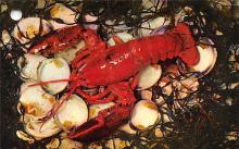 top006001 - Lobster Post Card