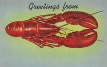 top006053 - Lobster Post Card