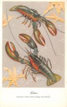 top006091 - Lobster Post Card